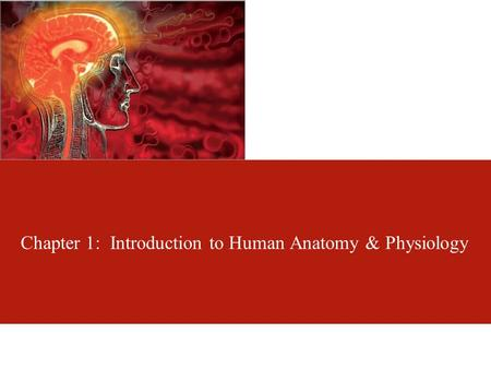 Chapter 1: Introduction to Human <strong>Anatomy</strong> & <strong>Physiology</strong>.