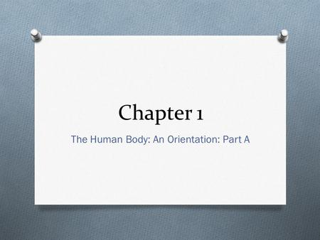 Chapter 1 The Human Body: An Orientation: Part A.
