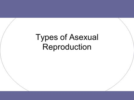 Types of Asexual Reproduction. Purpose of Reproduction To make sure a species can continue. –Definition: Reproduction is the process by which an organism.