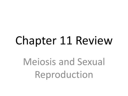 Chapter 11 Review Meiosis and Sexual Reproduction.