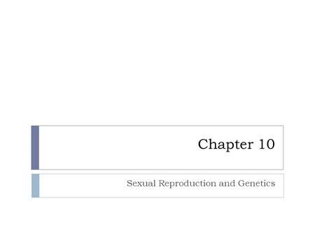 Chapter 10 Sexual Reproduction and Genetics. Chapter 10.1 Meiosis.
