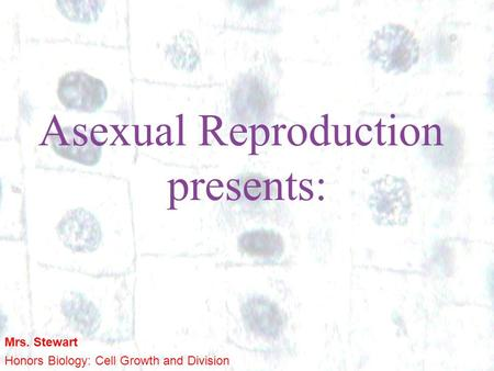 1 1 Asexual Reproduction presents: Mrs. Stewart Honors Biology: Cell Growth and Division.