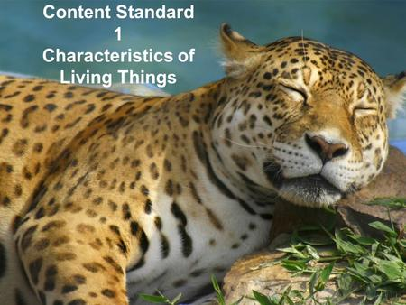 Content Standard 1 Characteristics of Living Things.
