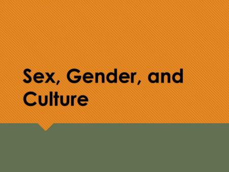 Sex, Gender, and Culture. Learning Objectives  Distinguish between developed and developing nations.  Describe the different developmental approaches.