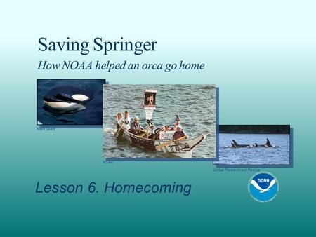 Saving Springer How NOAA helped an orca go home Lesson 6. Homecoming Mark Sears NOAA Global Research and Rescue.