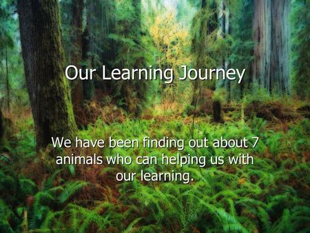 Our Learning Journey We have been finding out about 7 animals who can helping us with our learning.