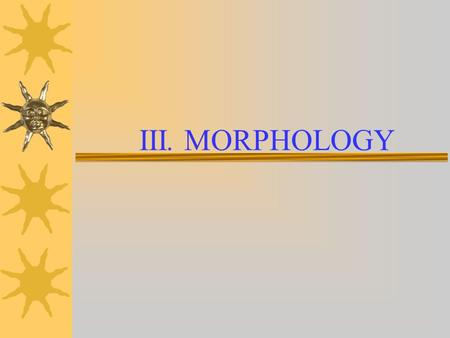 III. MORPHOLOGY. III. Morphology 1. Morphology The study of the internal structure of words and the rules by which words are formed. 1.1 Open classes.