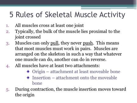 5 Rules of Skeletal Muscle Activity 1.All muscles cross at least one joint 2.Typically, the bulk of the muscle lies proximal to the joint crossed 3.Muscles.