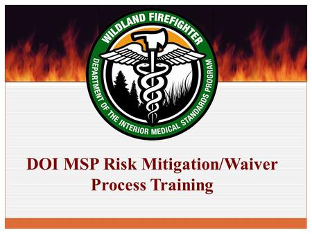 DOI MSP Risk Mitigation/Waiver Process Training. RM/W Process Overview Definition of the Process and Supporting Authority Roles and Responsibilities within.