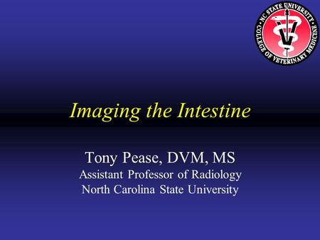 Imaging the Intestine Tony Pease, DVM, MS