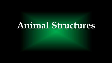 Animal Structures. How might animal structures change depending on their environment and energy needs?