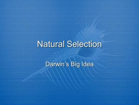 Natural Selection Darwin's Big Idea. Charles Darwin (born February 12, 1809) was a British scientist. He sailed around the world as a naturalist, recording.