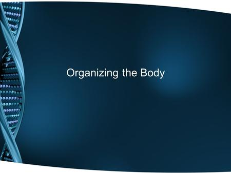 Organizing the Body. Anatomy The scientific study of structures and the relationship of structures to each other. FORM, shape, structure, and appearance.