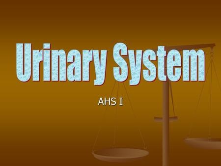 AHS I. Functions of Urinary System Excretion – removing nitrogenous wastes, certain salts and excess water from blood. Excretion – removing nitrogenous.