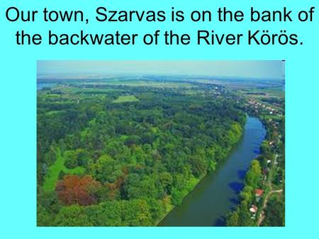 Our town, Szarvas is on the bank of the backwater of the River Körös.