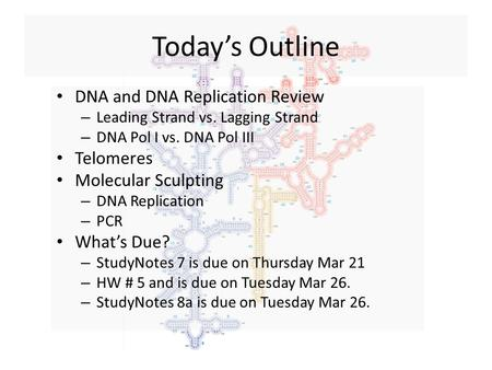 Today's Outline DNA and DNA Replication Review – Leading Strand vs. Lagging Strand – DNA Pol I vs. DNA Pol III Telomeres Molecular Sculpting – DNA Replication.