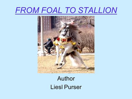FROM FOAL TO STALLION Author Liesl Purser Questions?  Do you want the baby to stay a stallion?  When is the best time to Geld?  Is he confirmation.