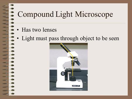 Compound Light Microscope Has two lenses Light must pass through object to be seen.
