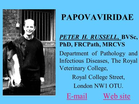 PAPOVAVIRIDAE PETER H. RUSSELL, BVSc, PhD, FRCPath, MRCVS Department of Pathology and Infectious Diseases, The Royal Veterinary College, Royal College.