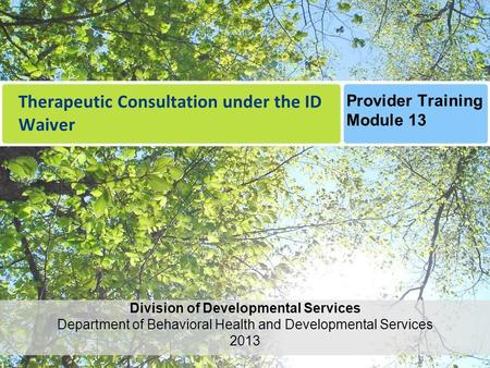 Therapeutic Consultation under the ID Waiver Division of Developmental Services Department of Behavioral Health and Developmental Services 2013 Provider.