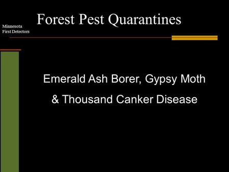 Minnesota First Detectors Forest Pest Quarantines Emerald Ash Borer, Gypsy Moth & Thousand Canker Disease.