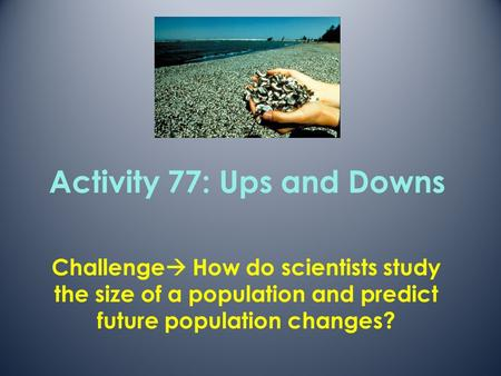Activity 77: Ups and Downs
