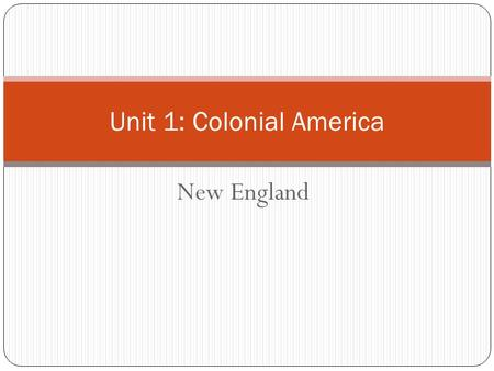 New England Unit 1: Colonial America. Who were the Puritans? The Puritans were a group of people who criticized the corruption and leadership in the Church.