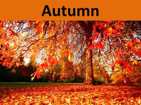 Autumn. Autumn is a third season of the year. Altogether there are four seasons: Spring Summer Autumn Winter In some countries like America, autumn is.