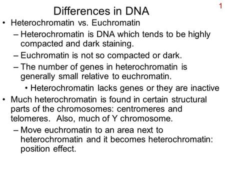 1 Differences in DNA Heterochromatin vs. Euchromatin –Heterochromatin is DNA which tends to be highly compacted and dark staining. –Euchromatin is not.