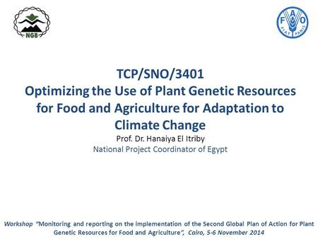 TCP/SNO/3401 Optimizing the Use of Plant Genetic Resources for Food and Agriculture for Adaptation to Climate Change Prof. Dr. Hanaiya El Itriby National.