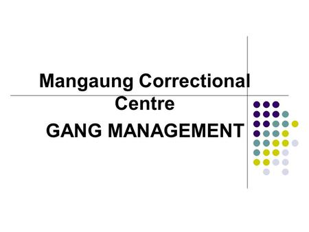 Mangaung Correctional Centre GANG MANAGEMENT. INTRODUCTION Prison gangs have been part of the South African Correctional environment for years, and cannot.