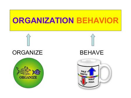 ORGANIZATION BEHAVIOR ORGANIZE BEHAVE. Course Contents.