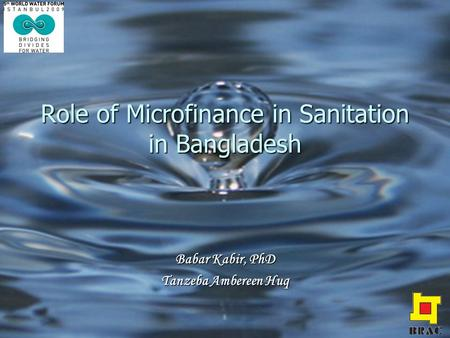 Role of Microfinance in Sanitation in Bangladesh Babar Kabir, PhD Tanzeba Ambereen Huq.