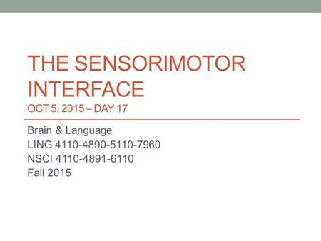 THE SENSORIMOTOR INTERFACE OCT 5, 2015 – DAY 17 Brain & Language LING 4110-4890-5110-7960 NSCI 4110-4891-6110 Fall 2015.