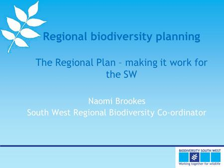 Regional biodiversity planning The Regional Plan – making it work for the SW Naomi Brookes South West Regional Biodiversity Co-ordinator.