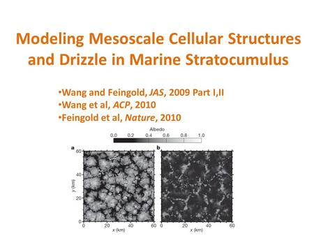 Modeling Mesoscale Cellular Structures and Drizzle in Marine Stratocumulus Wang and Feingold, JAS, 2009 Part I,II Wang et al, ACP, 2010 Feingold et al,