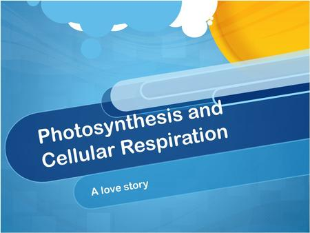Photosynthesis and Cellular Respiration A love story.