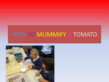 HOW TO MUMMIFY A TOMATO. What You Need Tomato Natron Knife and spoon Tub Paper towel Weighing scales Antibacterial hand wash (containing alcohol) Chopping.