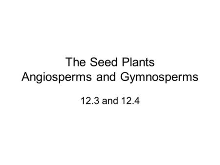 The Seed Plants Angiosperms and Gymnosperms 12.3 and 12.4.