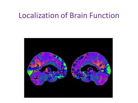 Localization of Brain Function. Early Research into Brain Localization Paul Broca, 1861: left Frontal lobe area—understand and make correct grammatical.