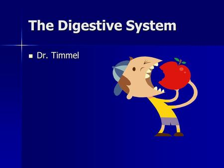 The Digestive System Dr. Timmel Dr. Timmel. What is the digestive system? The digestive system is a one-way tube the begins at the mouth and ends at the.