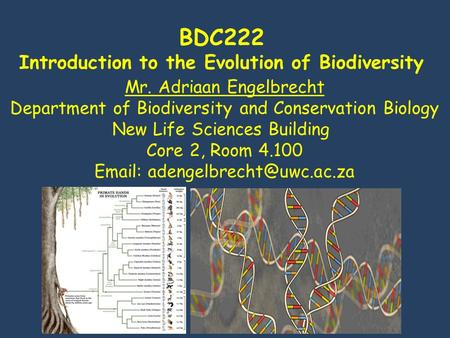 BDC222 Introduction to the Evolution of Biodiversity Mr. Adriaan Engelbrecht Department of Biodiversity and Conservation Biology New Life Sciences Building.