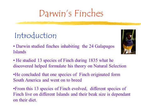 Darwin's Finches : Darwin studied finches inhabiting the 24 Galapagos Islands He studied 13 species of Finch during 1835 what he discovered helped formulate.