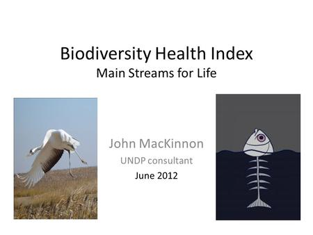 Biodiversity Health Index Main Streams for Life John MacKinnon UNDP consultant June 2012.
