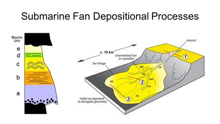 Submarine Fan Depositional Processes