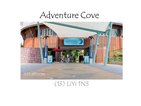 Adventure Cove (13) LiYi 1N3. Universal Studios Singapore Marine Life Park Adventure Cove Waterpark.