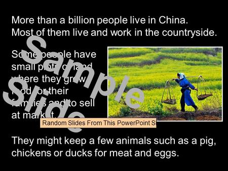 More than a billion people live in China. Most of them live and work in the countryside. Some people have small plots of land where they grow food for.
