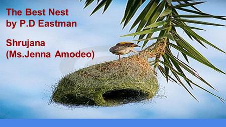 The Best Nest by P.D Eastman Shrujana (Ms.Jenna Amodeo)
