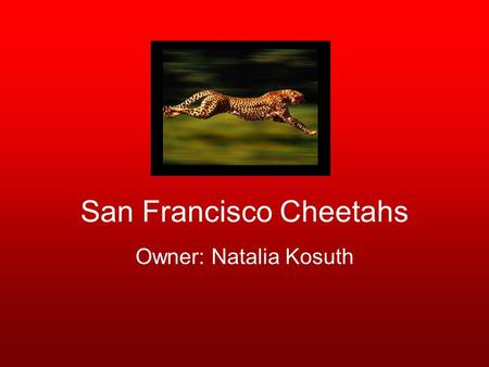 "San Francisco Cheetahs Owner: Natalia Kosuth. Donovan Ricketts Jersey #1 Goalkeeper 6'3"" 215lbs Age: 33 Played on Jamaica under-20 and Olympic teams."