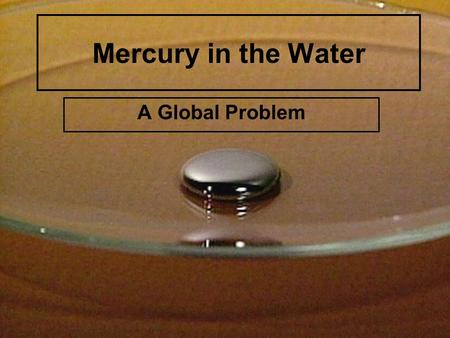 Mercury in the Water A Global Problem. What is Mercury? A liquid element. A potent neurotoxin.